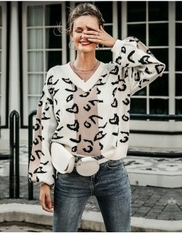 Aganetha Leopard Print Sweater